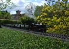 LMS Tilbury Tank on coal train.