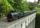 Britannia on the viaduct at Iden
